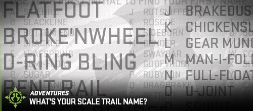 Adventures_whats_your_scale_trail_name_500px